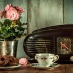 Extension de la licence légale aux Web radios : le Conseil constitutionnel rend son avis