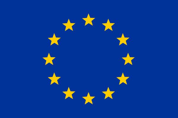 Lancement de la consultation publique sur le Digital Services Act